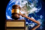 prawnik - notariusz